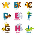 Alphabet animals from a to i vector illustration Stock Photo