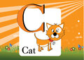 Alphabet c illustration of with cat Stock Image