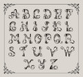 Alphabet calligraphique Photos stock