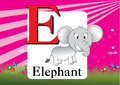 Alphabet e illustration of with elephant Royalty Free Stock Images