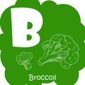 Alphabet for kids with vegetables. Healthy letter abc B-Broccoli