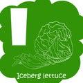 Alphabet for kids with vegetables. Healthy letter abc I-Iceberg lettuce