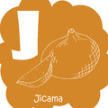 Alphabet for kids with vegetables. Healthy letter abc J-Jicama.