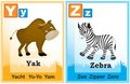 Alphabet learning book page animal with cute animals and capital and simple letters y z illustration specially for preschool Stock Images