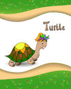 Alphabet letter t and turtle animal with a colored background Royalty Free Stock Photos