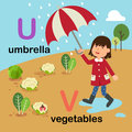 Alphabet Letter U-umbrella,V-vegetables,illustration Royalty Free Stock Photo