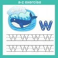 Alphabet Letter W-whale exercise,paper cut concept vector illust Royalty Free Stock Photo