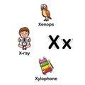 Alphabet Letter X-xenops,x-ray,xylophone illustration Royalty Free Stock Photo