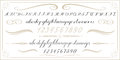 ALPHABET Old handwritten letters and numbers Royalty Free Stock Photo