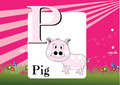 Alphabet p illustration of isolated with pig Stock Photography