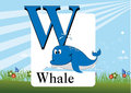 Alphabet w illustration of isolated with whale Stock Images