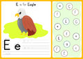 Alphabet A-Z Tracing and puzzle Worksheet, Exercises for kids - illustration and vector