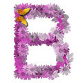 Alphabetical letter consonant B Royalty Free Stock Photo
