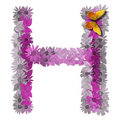 Alphabetical letter consonant H Stock Photo