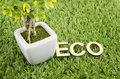 Alphabetical word of eco made from brown wood decorate with aritificial green tree on artificial grass Stock Images