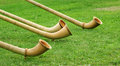 Alphorns on green lawn traditional folkmusic instrument switzerland an Stock Image