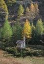 Alpine Chapel against Fall trees Royalty Free Stock Photo