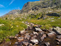Alpine Creek Stock Photos