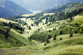Alpine green valley Royalty Free Stock Photo
