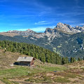 Alpine hut in the dolomites cabin and dairy cows on a pasture south tyrol italy on a sunny day Stock Images