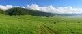 Alpine meadow at Asy Plateau