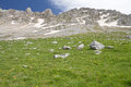 Alpine meadow and rocky summits meadows under the of vardousia mountain central greece Stock Photo