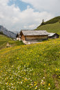 Alpine meadow with wooden houses Royalty Free Stock Photo