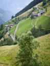 Alpine pasture vertical Stock Photography