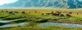 Alpine pastures Royalty Free Stock Photography