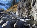Alpine stream late fall scene Royalty Free Stock Photo