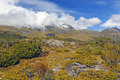 Alpine vegetation below cloud shrouded peaks at the key along the routeburn track Stock Image