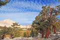 Alpine view of the sierra nevada mountains california usa Royalty Free Stock Photos