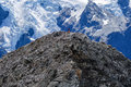 Alpinists on mount olivier looking at hooker glacier and aoraki cook from at the aoraki cook national park new zealand Royalty Free Stock Image