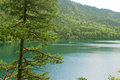 Alpsee lake near hohen schwangau and neuschwanstein castles germany taken august Royalty Free Stock Photography