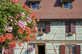 Alsace village with flower Royalty Free Stock Photos