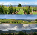 Alsatian landscapes and skies three panoramic views of the region in france alsace is well known for its production of white wine Royalty Free Stock Photo
