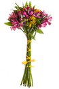 Alstroemeria flowers bouquet isolated Royalty Free Stock Photo