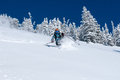 Alta back country woman skiing deep powder near ski area wasatch mountains utah Stock Photo