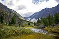 Altai creek stream kuyguk in the mountains on the way to the lake Stock Photos