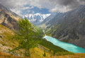 Altai mountains mountain lake russia siberia chuya ridge Stock Image