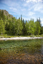 Altai river kumir girlish reaches of mountain Royalty Free Stock Photography