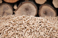 Alternative energy heap of pine pellets selective focus on the heap stock photo Stock Image