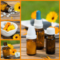 Alternative medicine with calendula flowers Royalty Free Stock Photos