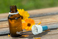 Alternative medicine with calendula flowers Royalty Free Stock Photography