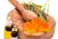 Alternative Medicine - Calendula Officinalis Royalty Free Stock Photography