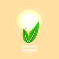 Alternative sources of energy vector illustration biofuels and eco light bulb with a plant Royalty Free Stock Photography