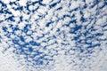 Altocumulus clouds in the blue sky
