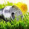 Aluminum can on a green grass Royalty Free Stock Photo