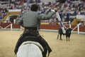 Alvaro montes bullfighter on horseback spanish coso de la alameda jaen spain october Stock Image