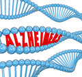 Alzheimer's Disease DNA Strand Medical Research Cure Royalty Free Stock Photo
